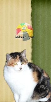 かわいい三毛子ちゃん-紙風船- グリーン