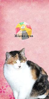 かわいい三毛子ちゃん-紙風船- 桃色