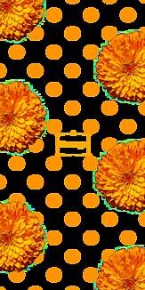 花 オレンジ ドット