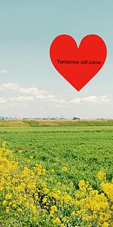 菜の花畑 Tomorrow will come ハート