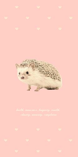 ハリネズミ ライトピンクセピア