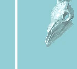 シカ 頭骨