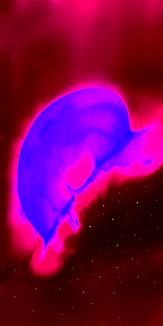 宇宙を創るクラゲ:赤