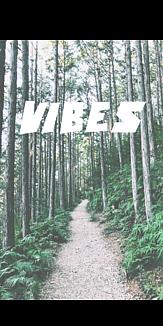 Vibes バイブス ホワイト