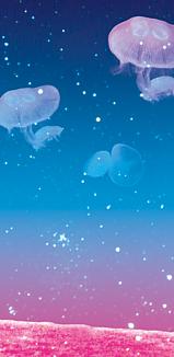 空飛ぶクラゲ