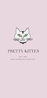 ネコ、猫、neko。
