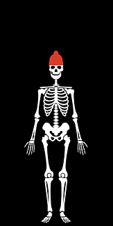 ガイコツ帽子