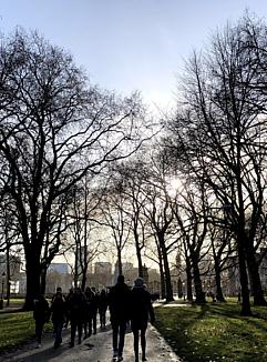 Morning at Green Park