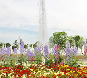 Fountain&Flower bed