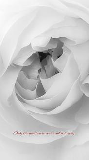 flower♥No.8