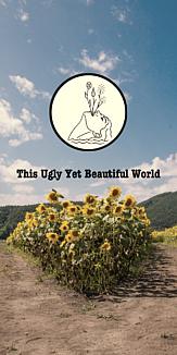 美しい世界4