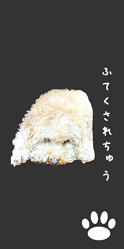といぷーどる(ふてくされ犬)