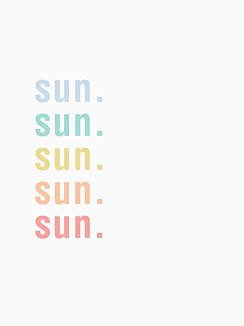 ロゴ入りケース SUN カラフル