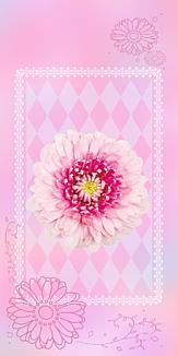 透明スマホリングがオススメ ピンクのお花