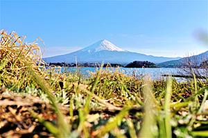 どこからでも見える富士山