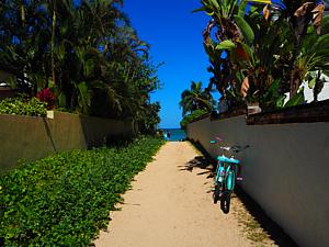 ハワイの路地と自転車