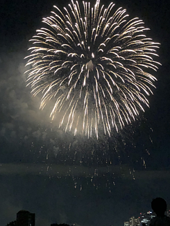 夏夜の花火