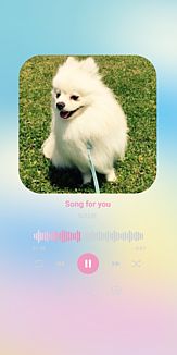 MUSIC♡ポメラニアン レインボー