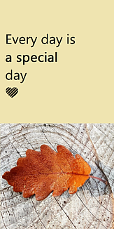 Every day is a special day