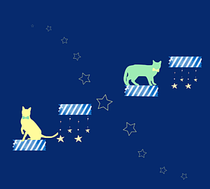 兄弟猫と星のキャットウォーク