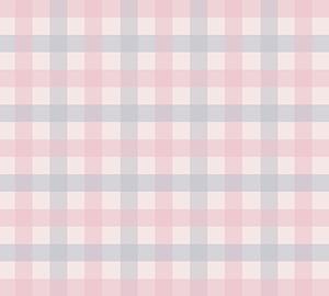 ギンガムチェック くすみピンク*ブルー