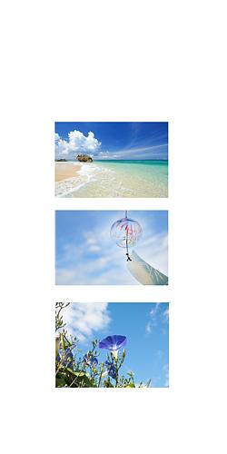 夏 海と風鈴とアサガオ