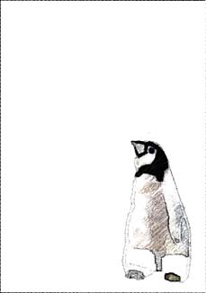 ワンコ王国の友好国であるペンギンランドの子ペンギン1です