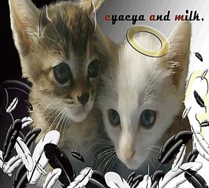 ちゃちゃ&ミルク 天使と悪魔