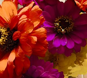Happy flower.6