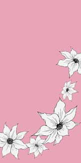 クレマチス(ピンク)