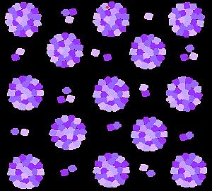 紫の花束を